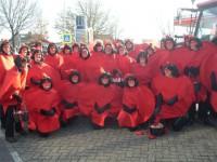 loopgroep 2013 hart voor carnaval